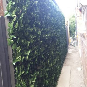 Artificial Ivy Wall – Before/After