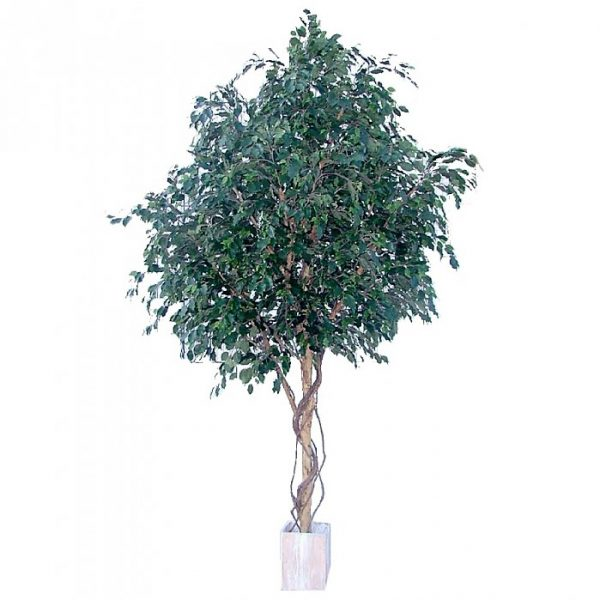 Artificial Ficus Exotica Giant Tree 3.1mt - 6600 lvs
