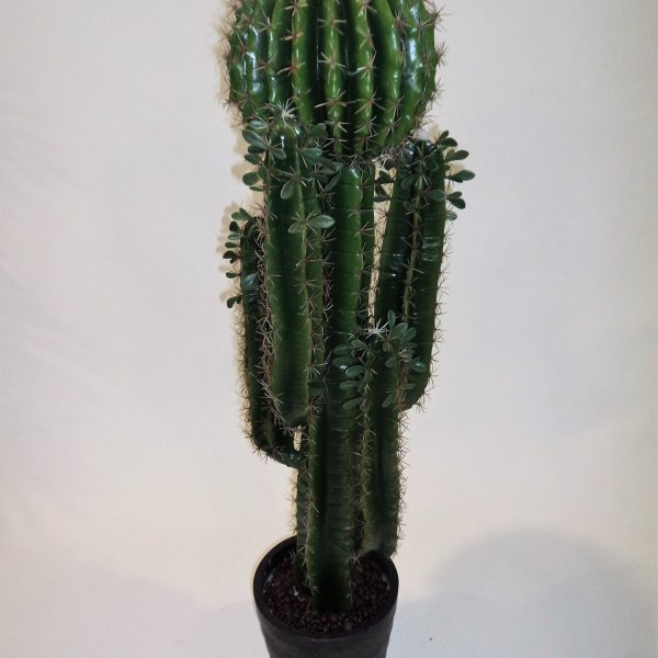 Desert Cactus with Ball 125cm