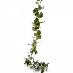 Devils Ivy Pothos artificial Garland 180cm - cream-green