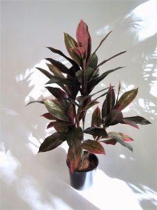 Artificial Cordyline Plant 90cm