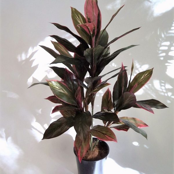 Artificial Cordyline Plant 90cm