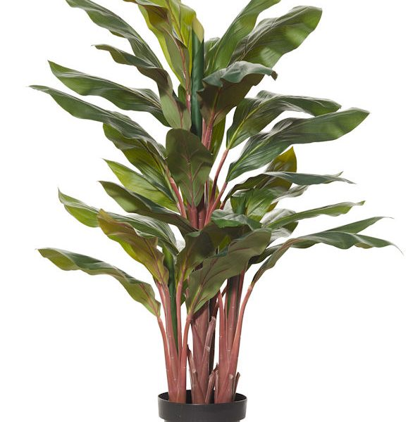 Artificial-Cordyline-Plant-120cm-GrRd