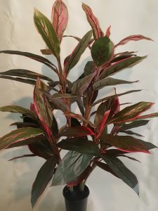 Artificial-Cordyline-Plant-90cm-dble