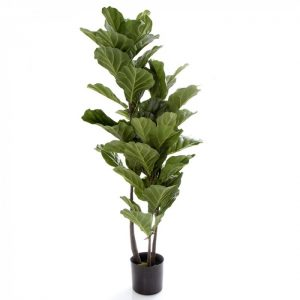 Artificial Fiddle Leaf Tree 135cm-real timber-60 realistic lvs