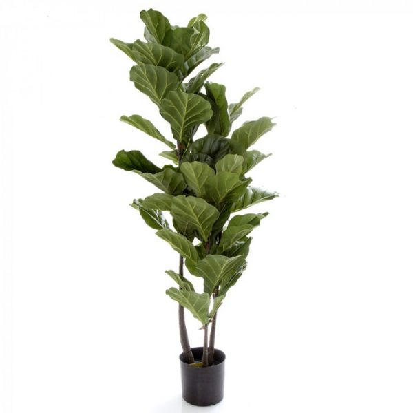 Artificial Fiddle Leaf Tree 135cm-realistic-trunk-60 realistic lvs
