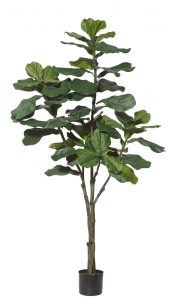 Artificial Fiddle Leaf Tree 180cm-real timber-60 realistic lvs