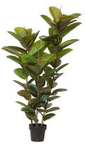 Artificial-Rubber-Tree-150cm-x-3-stems
