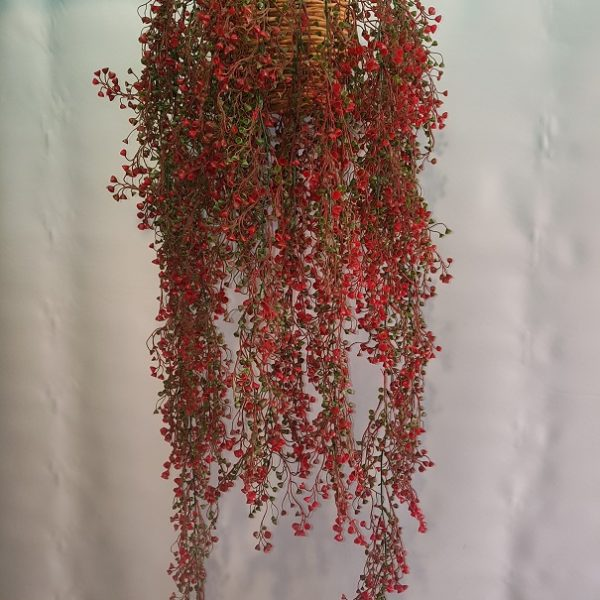 Red-Shell-Hanging-Bush-1mt-double