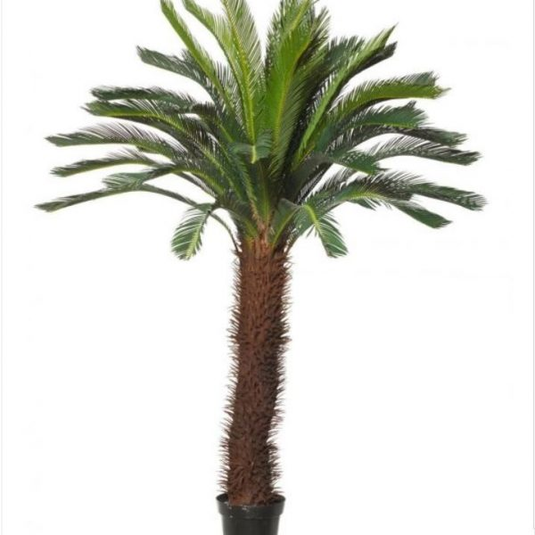 Artificial Giant Cycad Tree 150cm-single Head