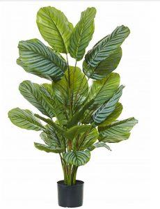 Artificial Calathea Plant 115cm x 22 large round leaves