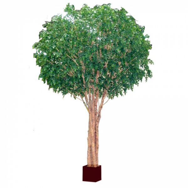 Beech Tree 5.7mt Giant Artificial Tree