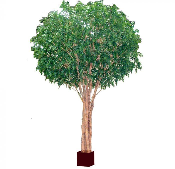 Beech Tree 5.7mt Giant Artificial Tree