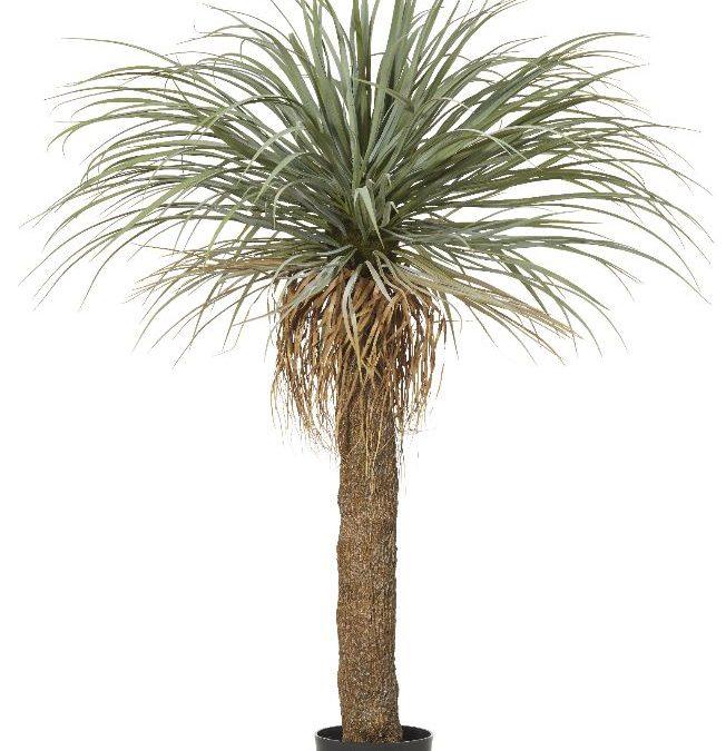 GRASS TREE 150cm QUALITY ARTIFICIAL PLANTS