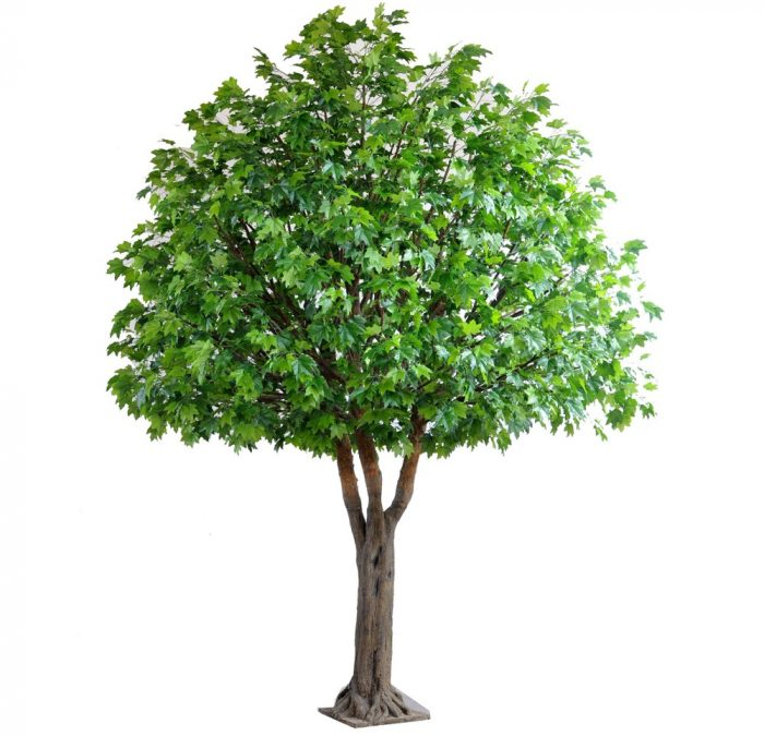 Maple Giant Tree 5.7mt Artificial Tree