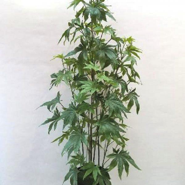 artificial marijuana nsw au nsw au - fake cannabis marijuana plant