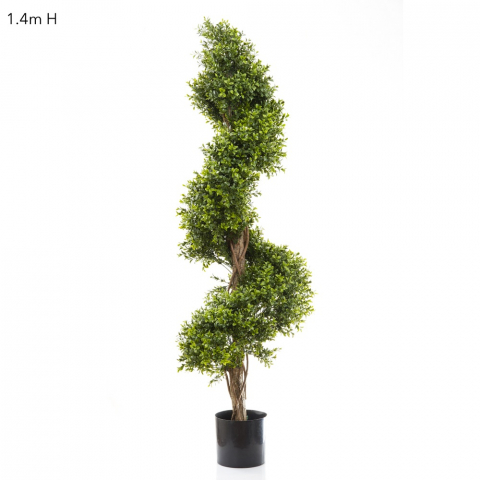 Boxwood spiral tree 140cm on natural timber trunk