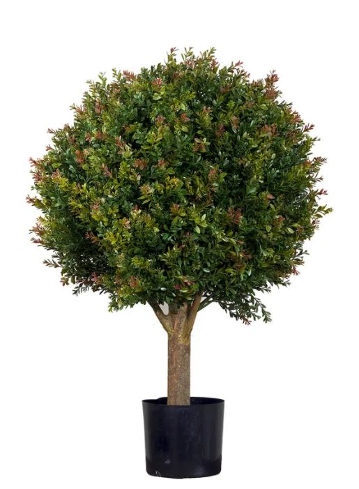 Red Day Leaf Ball Tree 85cm